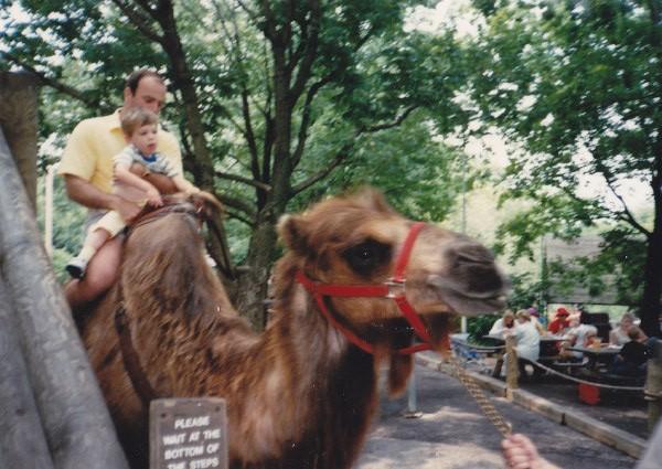Scott Drotar Camel