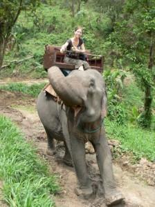 Scott Drotar Elephant Rider