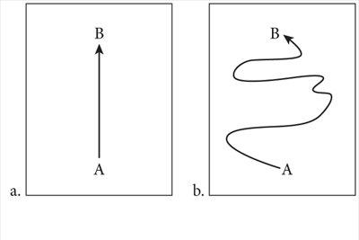Scott Drotar State Function